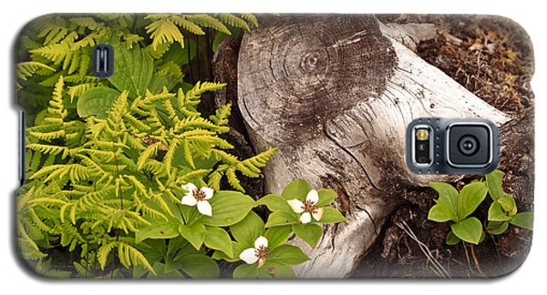 Alaskan Foliage Galaxy S5 Case