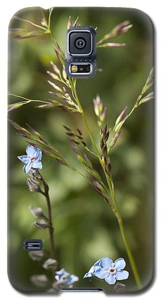 Alaskan Forget-me-nots Galaxy S5 Case