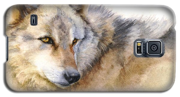 Galaxy S5 Case featuring the painting Alaskan Gray Wolf by Bonnie Rinier