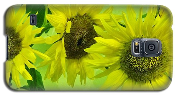 Galaxy S5 Case featuring the photograph Alaskan Sunflowers by Brigitte Emme