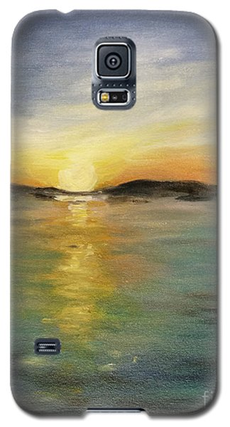 Alaskan Sunrise Galaxy S5 Case by Barbara Anna Knauf