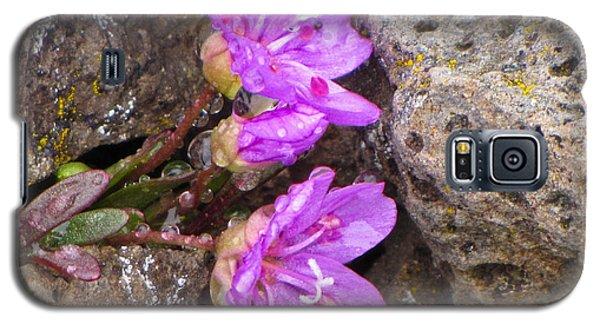 Alaskan Wildflower Galaxy S5 Case by Julie Andel