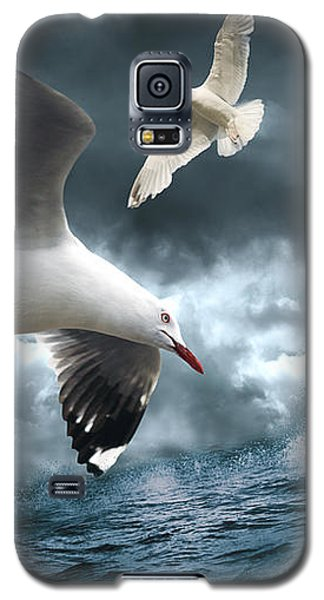 Albatross Galaxy S5 Case by Linda Lees