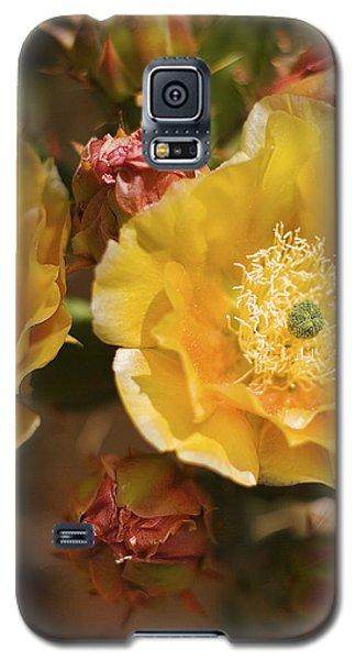 'albispina' Cactus #2 Galaxy S5 Case