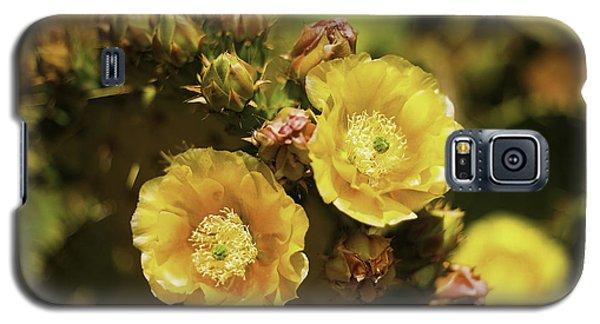 'albispina' Cactus #3 Galaxy S5 Case