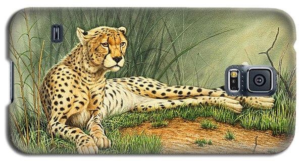 Cheetah Galaxy S5 Case - Alert Repose  - Cheetah by Paul Krapf