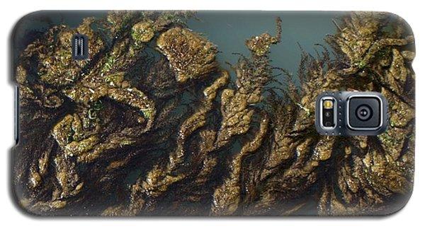 Galaxy S5 Case featuring the digital art Algae by Ron Harpham