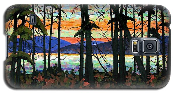Algoma Sunset Acrylic On Canvas Galaxy S5 Case