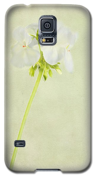 Alice Galaxy S5 Case