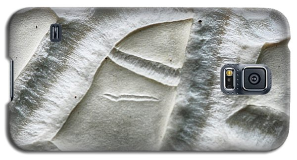 Alien Surface Galaxy S5 Case
