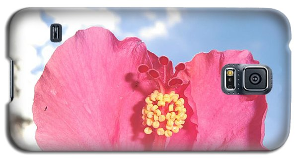 Blissful 33 Galaxy S5 Case