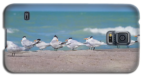 All In A Row Galaxy S5 Case