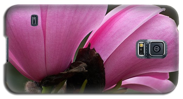 Galaxy S5 Case featuring the photograph Pink Magnolia by Sabine Edrissi