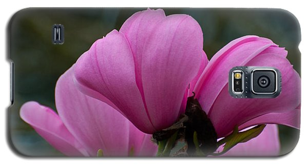 Galaxy S5 Case featuring the photograph Pink Magnolia 2 by Sabine Edrissi