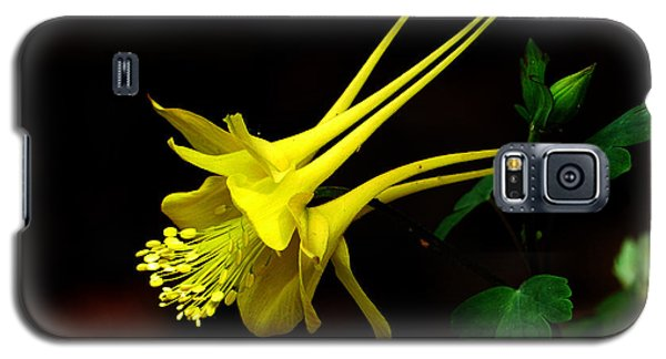 All Yellow Columbine Galaxy S5 Case