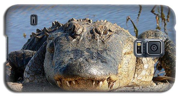 Alligator Approach Galaxy S5 Case