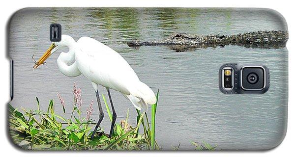 Alligator Egret And Shrimp Galaxy S5 Case