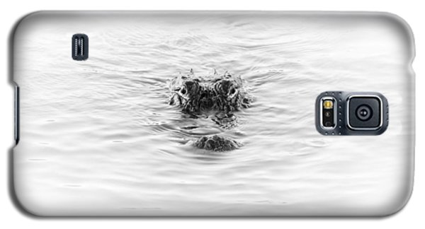 Alligator Galaxy S5 Case - Alligator by Ivo Kerssemakers