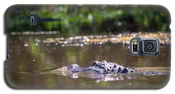 Alligator Swimming In Bayou 1 Galaxy S5 Case