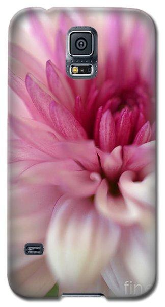 Alluring Galaxy S5 Case