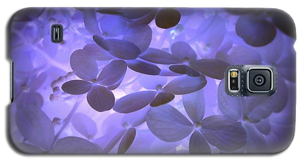 Alluring Hydrangeas Galaxy S5 Case by Deborah Fay