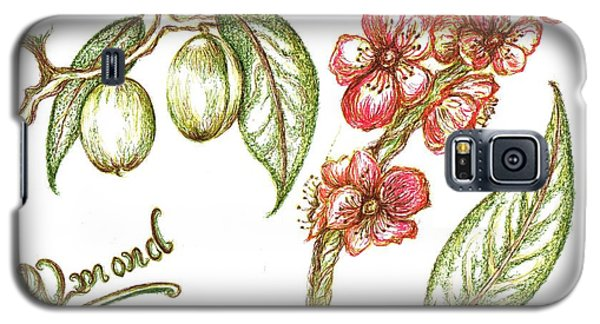 Almond With Flowers Galaxy S5 Case by Teresa White