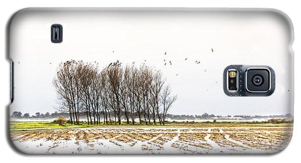 Almost Winter Galaxy S5 Case