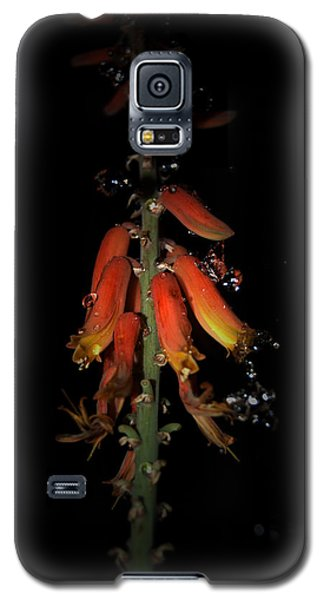Galaxy S5 Case featuring the photograph Aloe Flower by Leticia Latocki