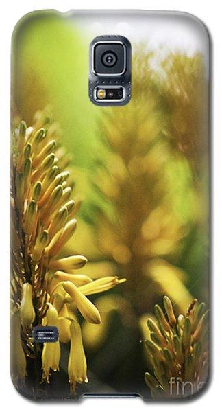 Aloe 'kujo' Plant Galaxy S5 Case