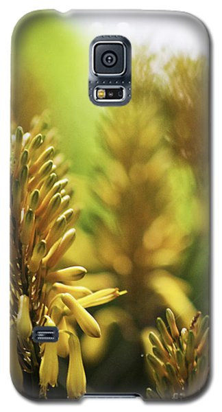 Aloe 'kujo' Plant Galaxy S5 Case