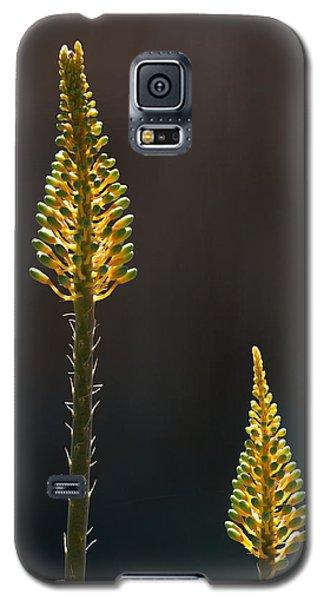 Aloe Plant Galaxy S5 Case
