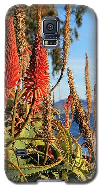 Aloe Vera Bloom Galaxy S5 Case