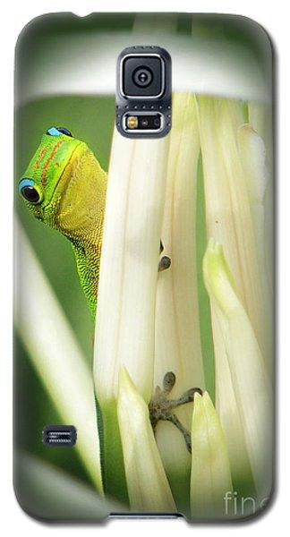 Galaxy S5 Case featuring the photograph Aloha by Ellen Cotton