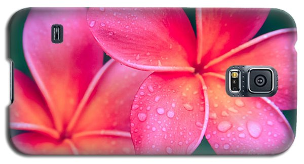 Aloha Hawaii Kalama O Nei Pink Tropical Plumeria Galaxy S5 Case