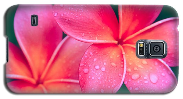 Aloha Hawaii Kalama O Nei Pink Tropical Plumeria Galaxy S5 Case by Sharon Mau