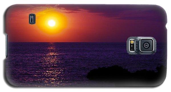 Aloha I Galaxy S5 Case by Patricia Griffin Brett