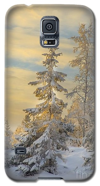Galaxy S5 Case featuring the photograph Alone But Strong by Rose-Maries Pictures