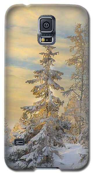 Alone But Strong Galaxy S5 Case by Rose-Maries Pictures