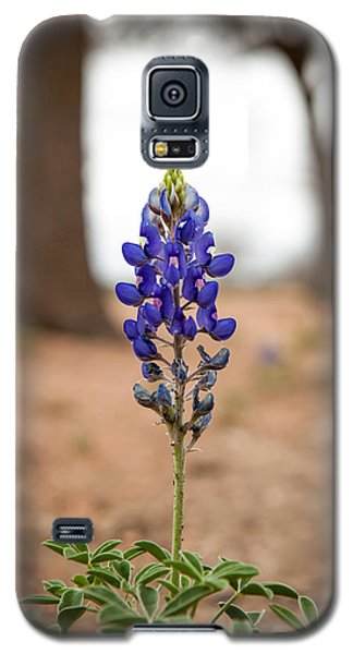 Alone In The Woods Galaxy S5 Case