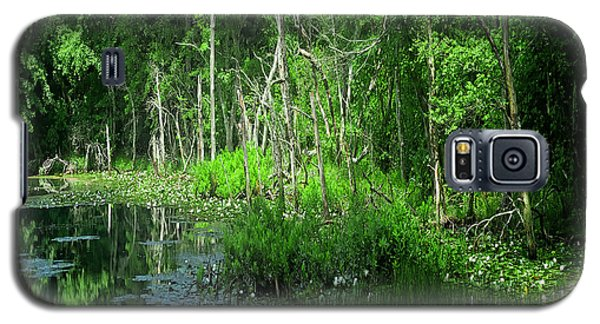 Along The Bank Of A Pristine Cape Cod River Galaxy S5 Case by Constantine Gregory