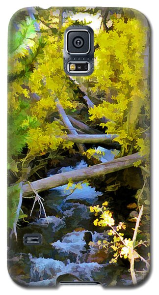Alpine Creek  Galaxy S5 Case