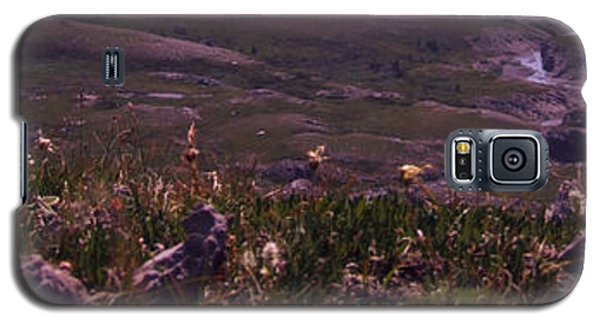 Alpine Floral Meadow Galaxy S5 Case