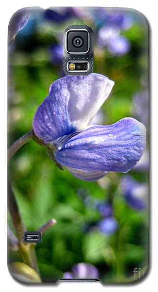 Galaxy S5 Case featuring the photograph Alpine Lupine by Kathy Bassett