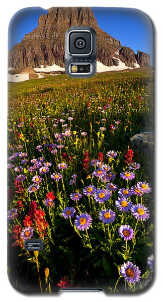 Alpine Meadow Galaxy S5 Case by Aaron Whittemore