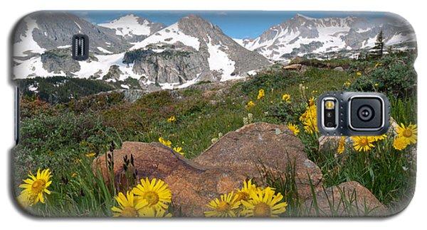 Alpine Sunflower Mountain Landscape Galaxy S5 Case