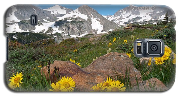Alpine Sunflower Mountain Landscape Galaxy S5 Case