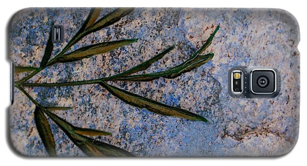 Galaxy S5 Case featuring the photograph Altered State by Judy Wolinsky