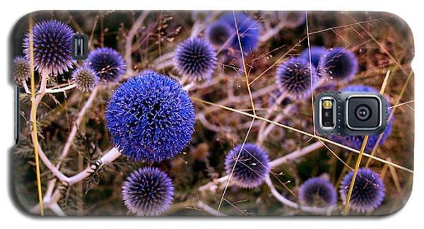 Alternate Universe Galaxy S5 Case