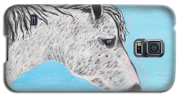 Alvaro Stallion Galaxy S5 Case