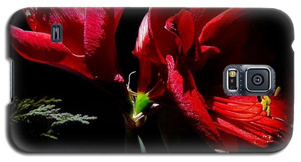 Amaryllis Duet Galaxy S5 Case